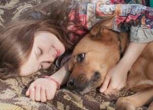 What Need Know About Heartworm Dogs